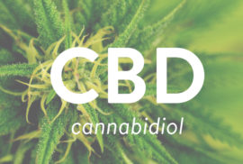 cbd-oil-what-you-need-to-know