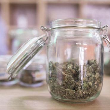 Neue Hanf-Läden hoffen auf komplette Legalisierung